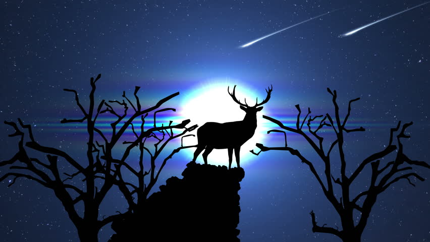 Deer Buck Silhouette with Shooting Stars and Moon at Night Animation | Shutterstock HD Video #10278914