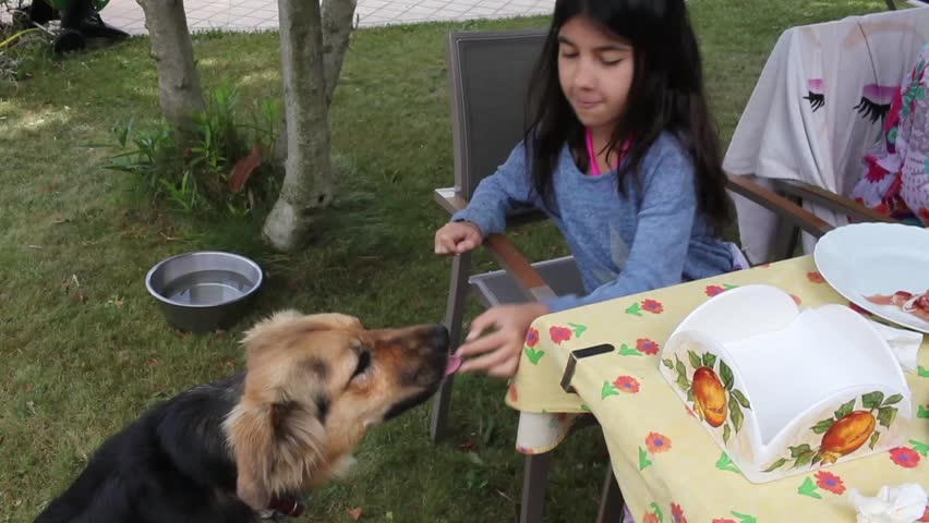 Video clip of girl feeding her dog near the table in the garden.