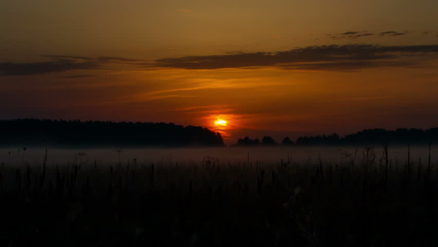 sunrise over field timelapse,  Sunrise over wild field, mist rises over the field, morning mist over the field, Landscape Timelapse, Rural countryside landscapes natural backgrounds