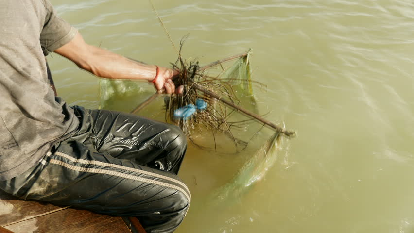 Upper close-up view on fisherman pulling drop net out of river and catching prawns , southeast asia, Cambodia.