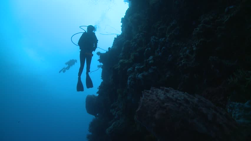 Diver from below at steep coral wall high angle Bunaken National Park Indonesia | Shutterstock HD Video #10909922