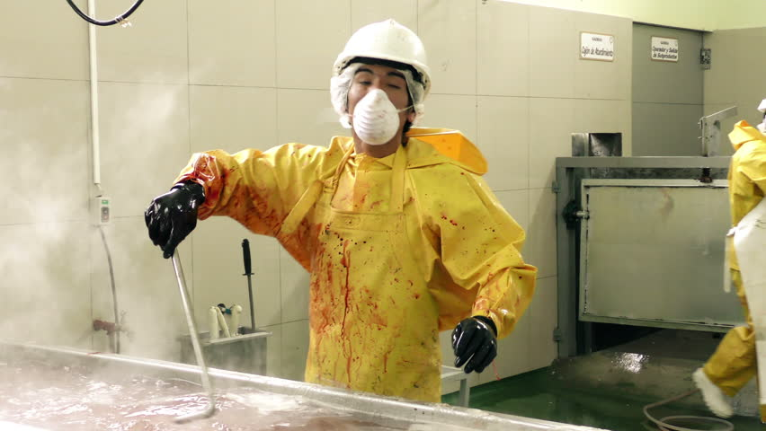 Routine work for a butcher inside of a slaughterhouse, wearing blood covered specific work wear near a scalding tub