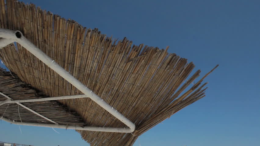 Thatched Roof Definition Meaning