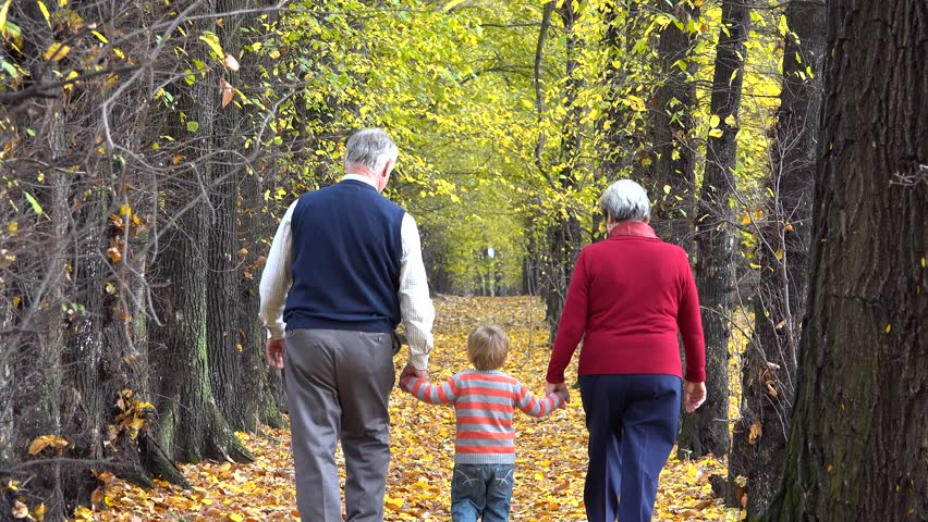 Happy grandparents and little grandchild holding hands walking on autumn alley