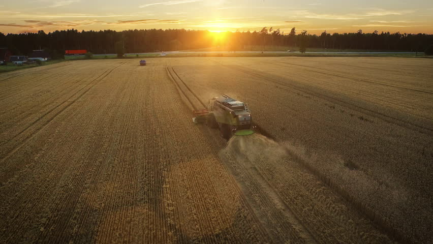 Aerial drone shot of a combine harvester working in a field at sunset. Shot in 4K (UHD). | Shutterstock HD Video #11742170