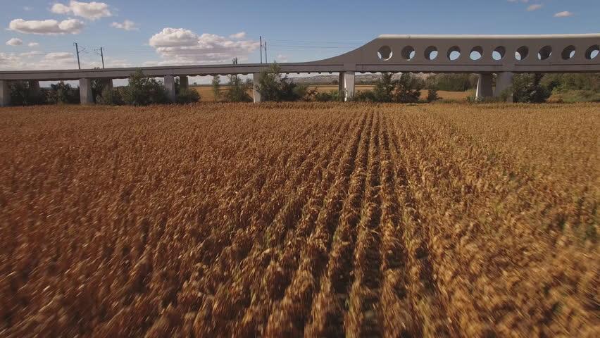 Side view of train over railway entering bridge near corn field, slow shutter speed in 4K