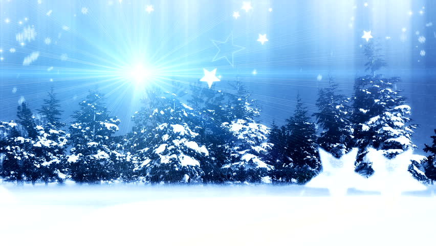 Beautiful winter forest with snow-covered trees on a bright sunny day, landscape - HD stock footage clip