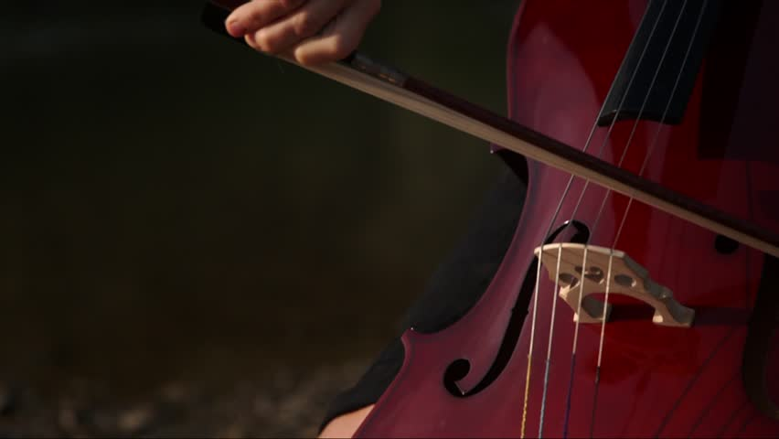 Cello Wallpaper Photo 22287 Hd Pictures: A Beautiful Cellist Studies The Music In Detail. Stock