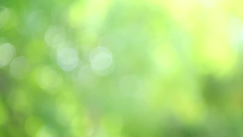 blurred beautiful natural landscape - photo #21