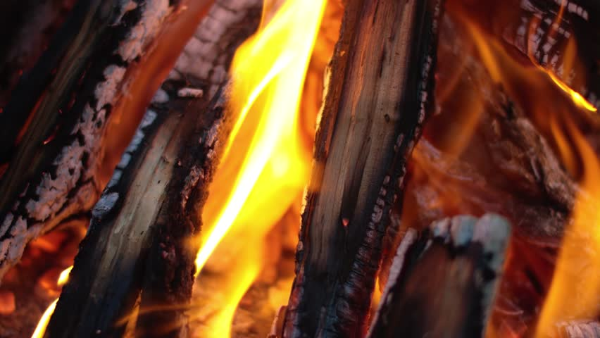 Firewood burning in the fire - 4K stock footage clip