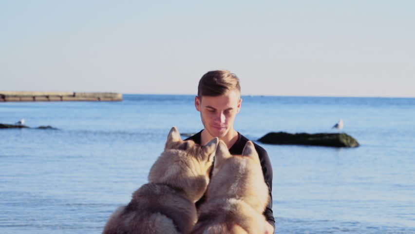 young man caressing two husky dogs on the beach...