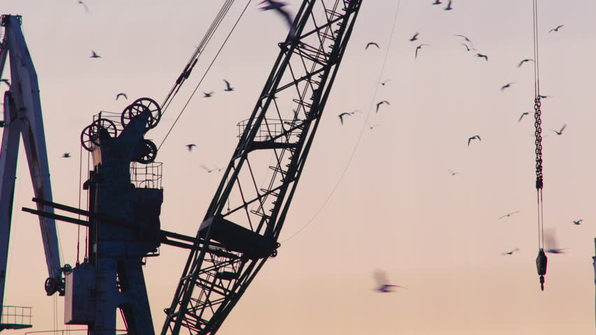 Static silhouetted harbor crane during golden hour, flocks of birds flying around