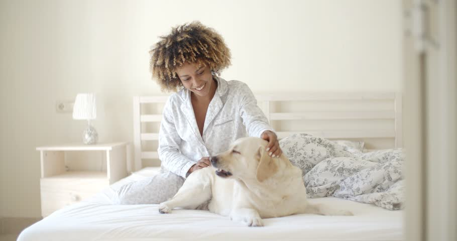 Young woman is holding a dog while laying on a bed in home - 4K stock footage clip