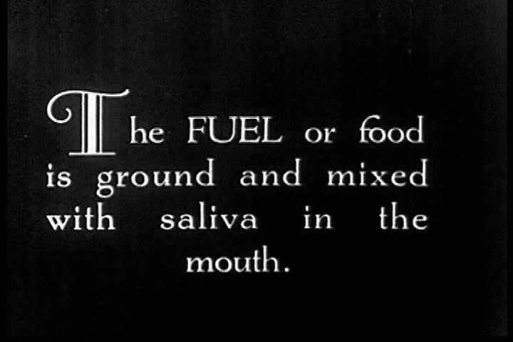 CIRCA 1920s - An animated diagram of food mixing with saliva as a man chews in the 1920s. - SD stock video clip