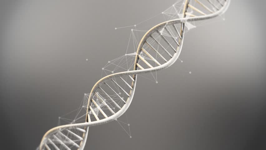 Futuristic Rotating White DNA Strand with Genetic Codes and abstract geometry - 3D Animation loop | Shutterstock HD Video #13222175