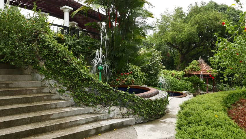 Separated pools with fountains, greenery area, Hibiscus Garden. Camera move by pathway, show fine gardening and decorative trees and shrubs, rose mallow flowers around. Wooden gazebo at end of path #13237736