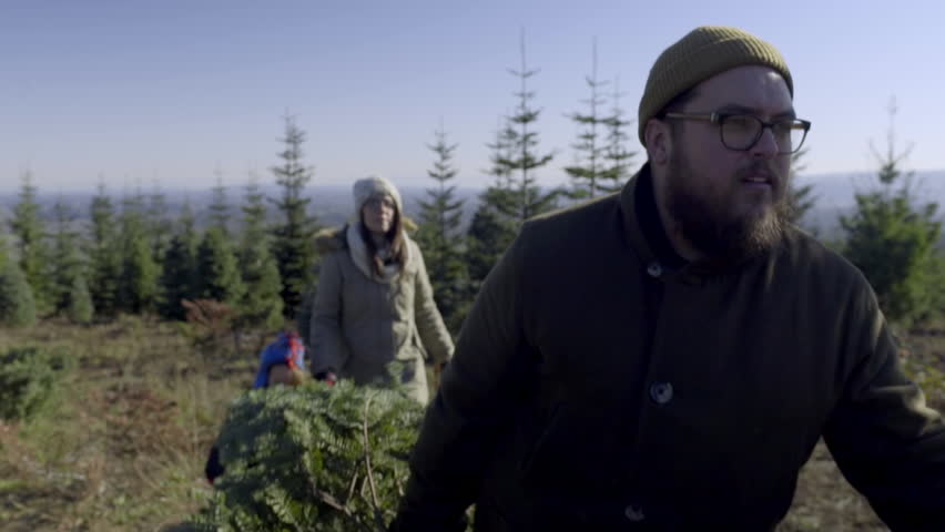 Father Carries Christmas Tree, Mother And Son Follow Behind (At U-Cut Christmas Tree Farm) | Shutterstock HD Video #13301420