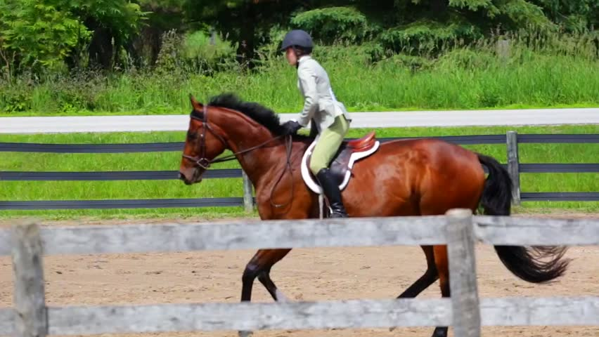 Woman Riding a Horse in Jumper Ring | Shutterstock HD Video #13371530