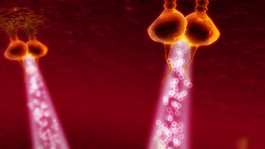 3d visualization of her3 type receptors reacting with cell nucleus