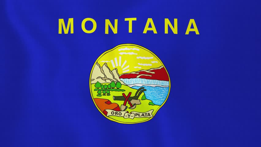 Loopable: Montana flag. Flag of state Montana waving in the wind. Seamless loop. Made from ultra high-definition original with detailed fabric texture. (av4423c) - 4K stock footage clip