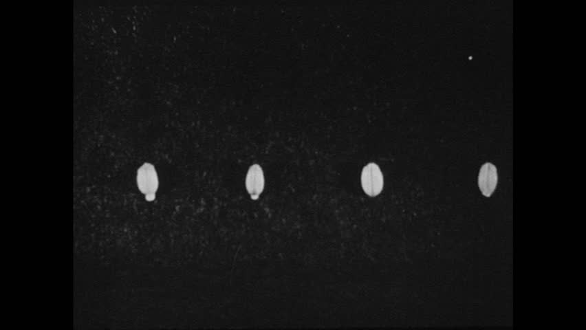 UNITED STATES 1940s: Time lapse footage of seeds sprouting / Loaf of bread.