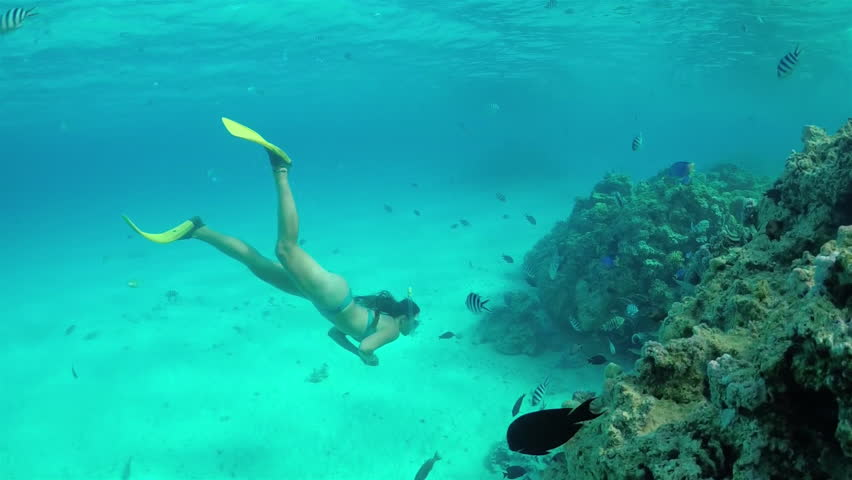 SLOW MOTION UNDERWATER: Young diver woman snorkeling and swimming underwater, exploring tropical reef with beautiful colorful exotic fish in crystal clear lagoon ocean in French Polynesia
