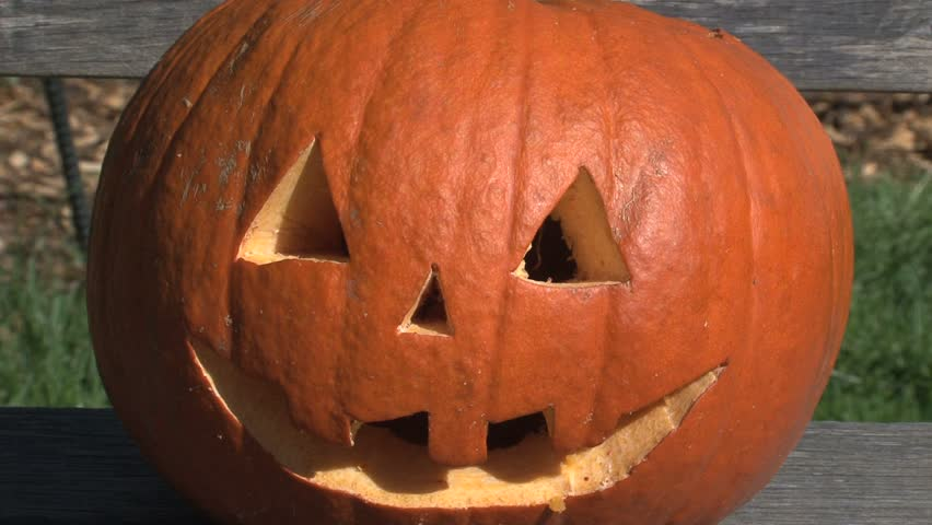 Carved pumpkin on bench | Shutterstock HD Video #1770890