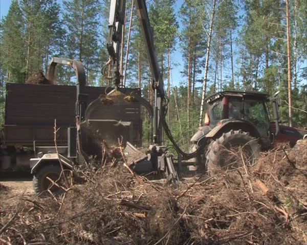 Special machinery chop tree branches. Clean organic fuel production.