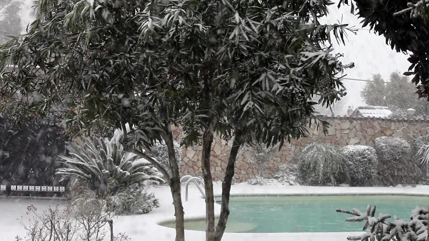 garden and swimming pool during the snow storm.