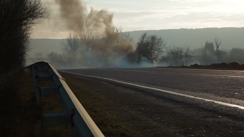 Forest fire on the roadside - HD stock video clip