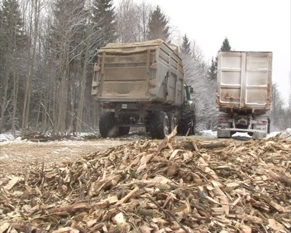 Organic biofuel wood branches chips sawdust solid fuel
