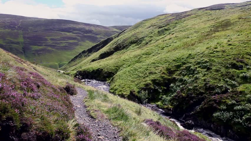A brook flows through a Vally in Scotland - HD stock footage clip