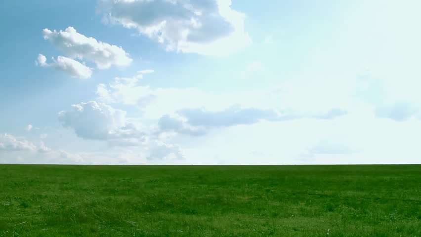 Meadow with green grass and blue sky with clouds - HD stock footage clip