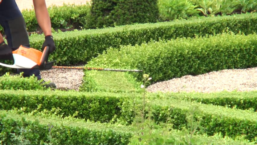 Trimming Boxwood In The Gardens Of Frederiksborg Palace