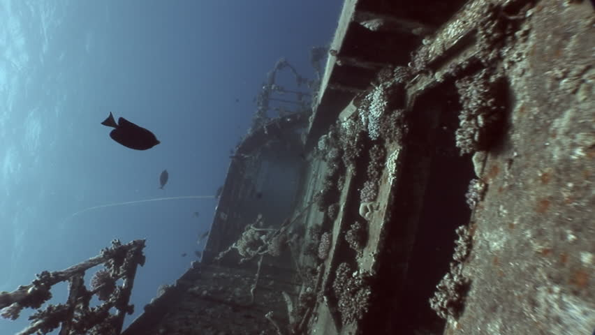 Ship wreck Salem Express underwater in the Red Sea in Egypt.Extreme tourism on ocean floor in world of coral reefs, fish, sharks. Researchers of wildlife blue abyss. Deep diving. | Shutterstock HD Video #24240722