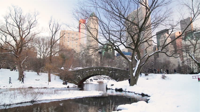 Central Park New York City in winter, people by tree next to stream bridge | Shutterstock HD Video #24251891