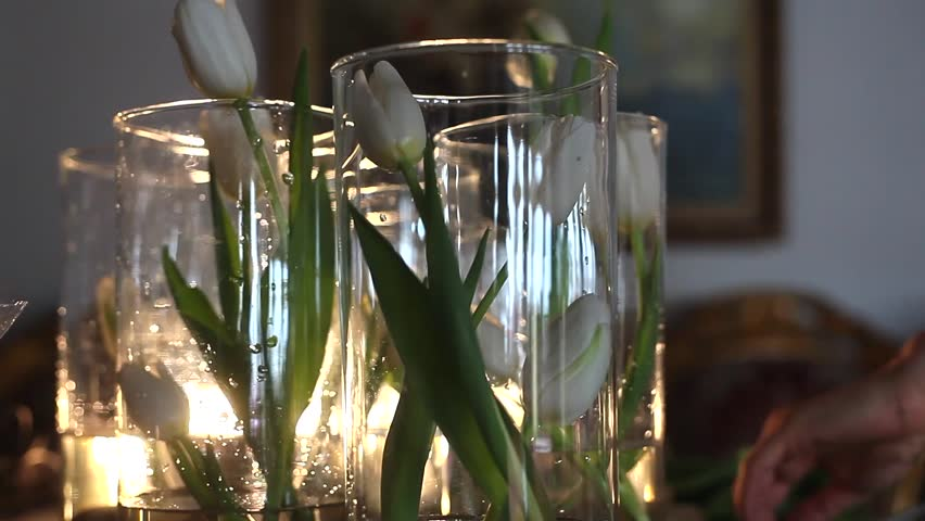 Florist Puts a White Tulips to the Clear Glass Vases #24324701