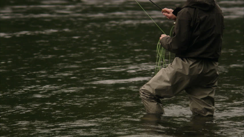 Man fly fishing on a trout stream stock footage video for Fly fishing maui