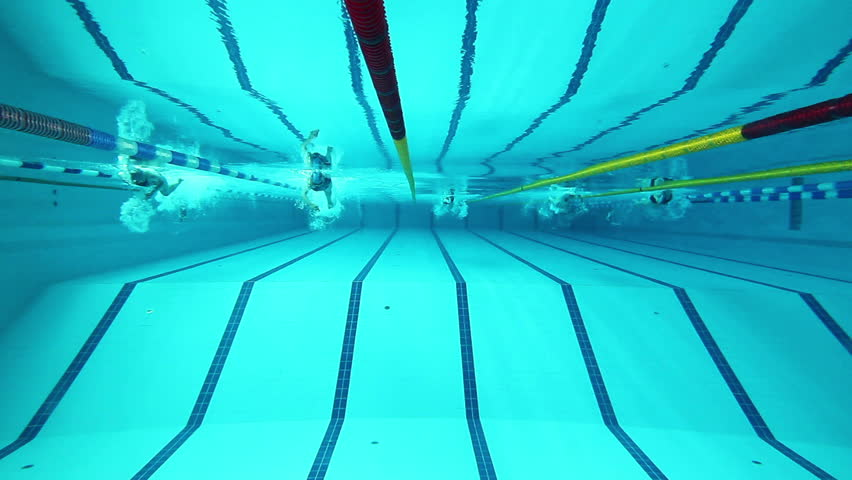 swimming pool and swimmer during the training - HD stock video clip