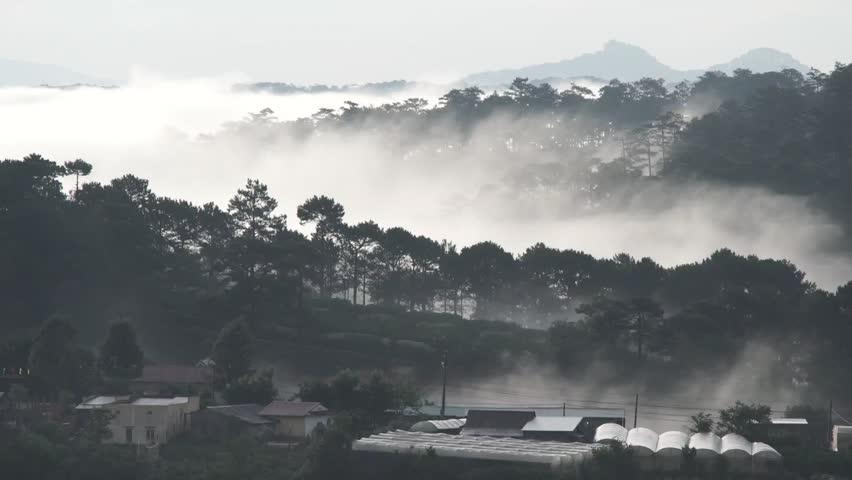 DA LAT, VIETNAM, Sep 23, 2015: pine forest, highland Da Lat city fog in the morning | Shutterstock HD Video #25001753