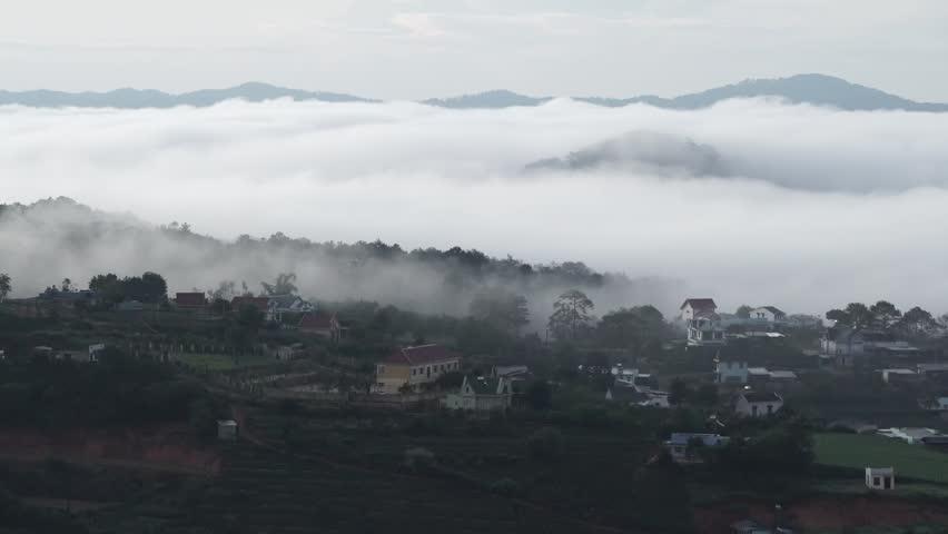 DA LAT, VIETNAM, Sep 23, 2015: pine forest, highland Da Lat city fog in the morning | Shutterstock HD Video #25001771