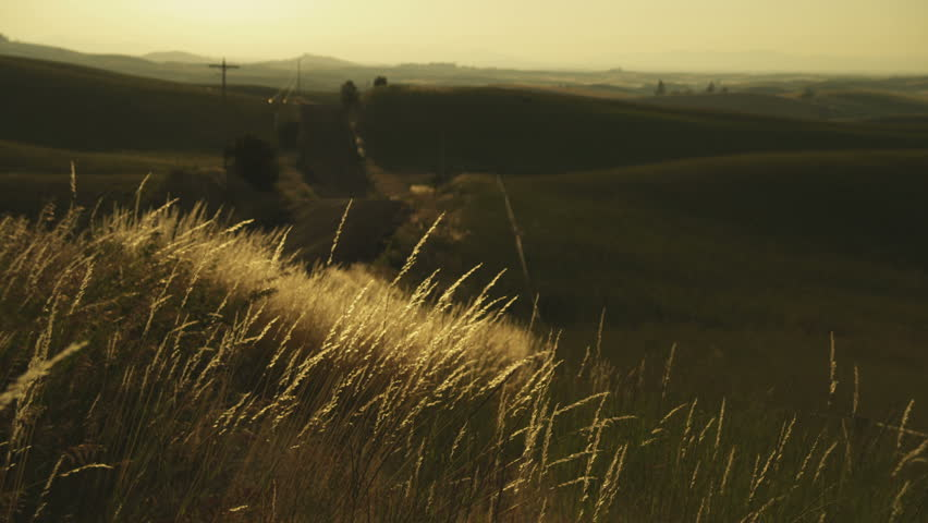 Country road and wheat fields at sunset. - HD stock video clip