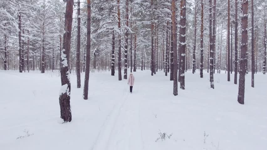 Walking through the winter forest, woman walks through the forest among the big snowdrifts, enjoying the wild nature and fresh air, top view | Shutterstock HD Video #25102247