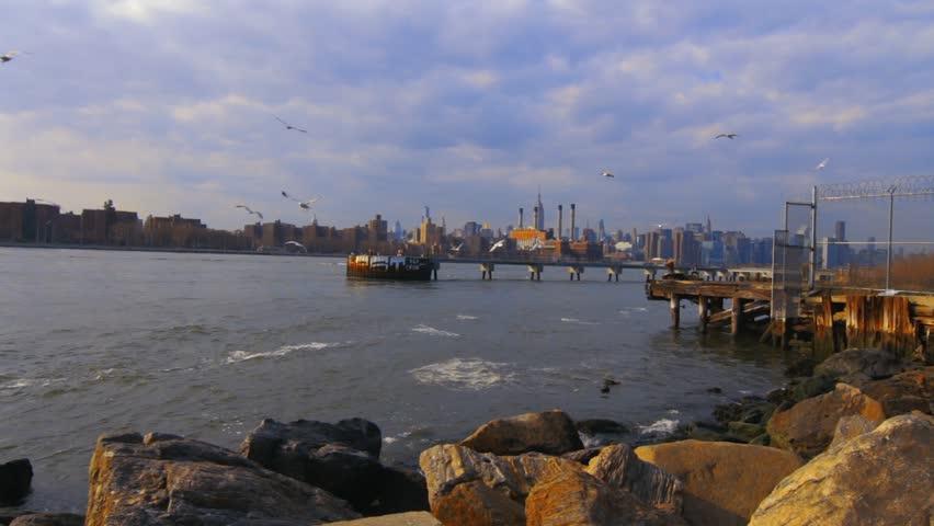 Seagull Frenzy At Christoper Park New York | Shutterstock HD Video #25187486