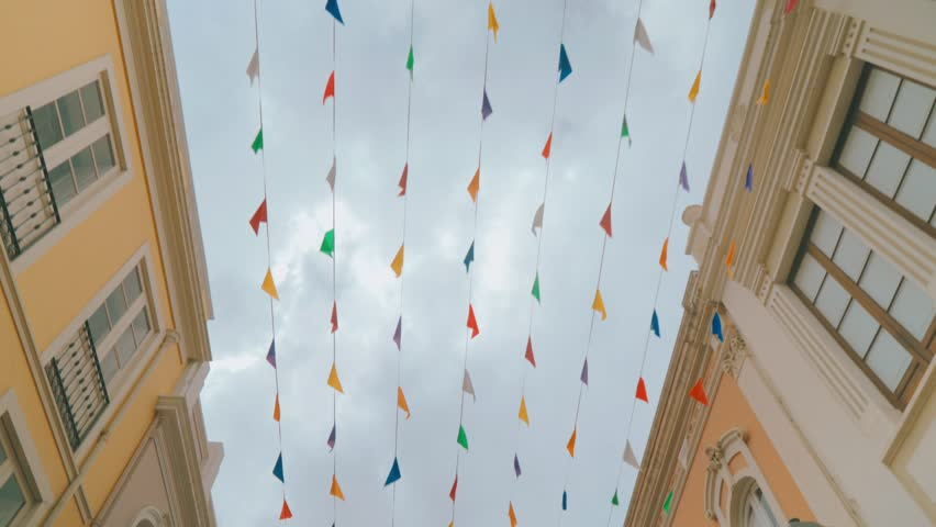 Festive decoration on the streets | Shutterstock HD Video #25209005