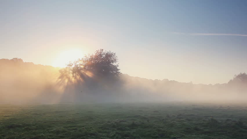 Mist rises over the river in the morning sun. Dramatic and picturesque scene. Wonderful natural background. Location place Ukraine, Europe. Explore the world's beauty. Shooting in HD 1080 video. | Shutterstock HD Video #25244402
