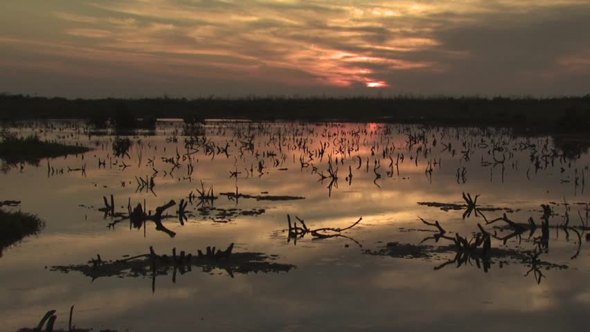 Wet Landscape at Sunrise - HD stock footage clip