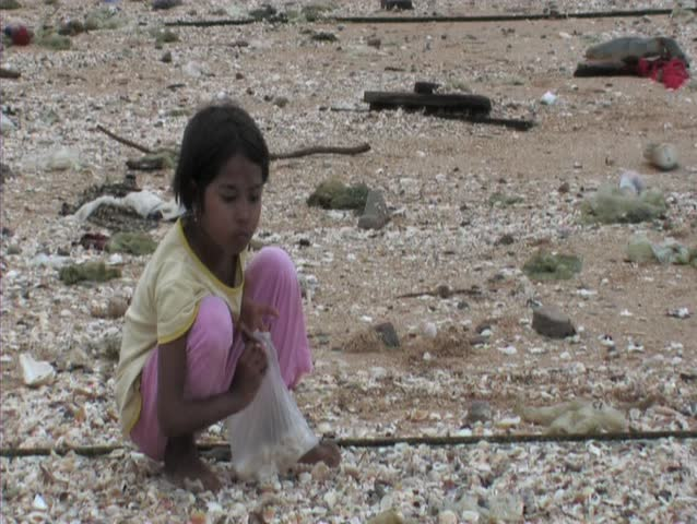 girl collecting shells on beach - SD stock footage clip