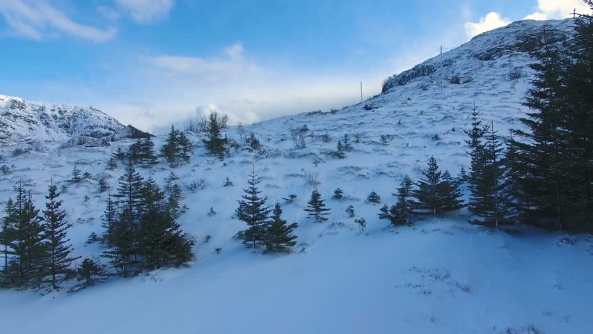 Flight over snow-covered fir trees on the slope of the Lofoten islands | Shutterstock HD Video #25771217