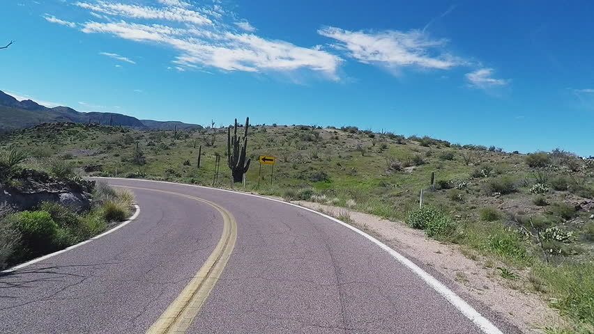 APACHE JUNCTION AZ/USA: March 23, 2017- Car view driving past Saguaro Cactus on a curving highway. First person view of desert plant scenery on winding back country stretch of pavement. | Shutterstock HD Video #26174975